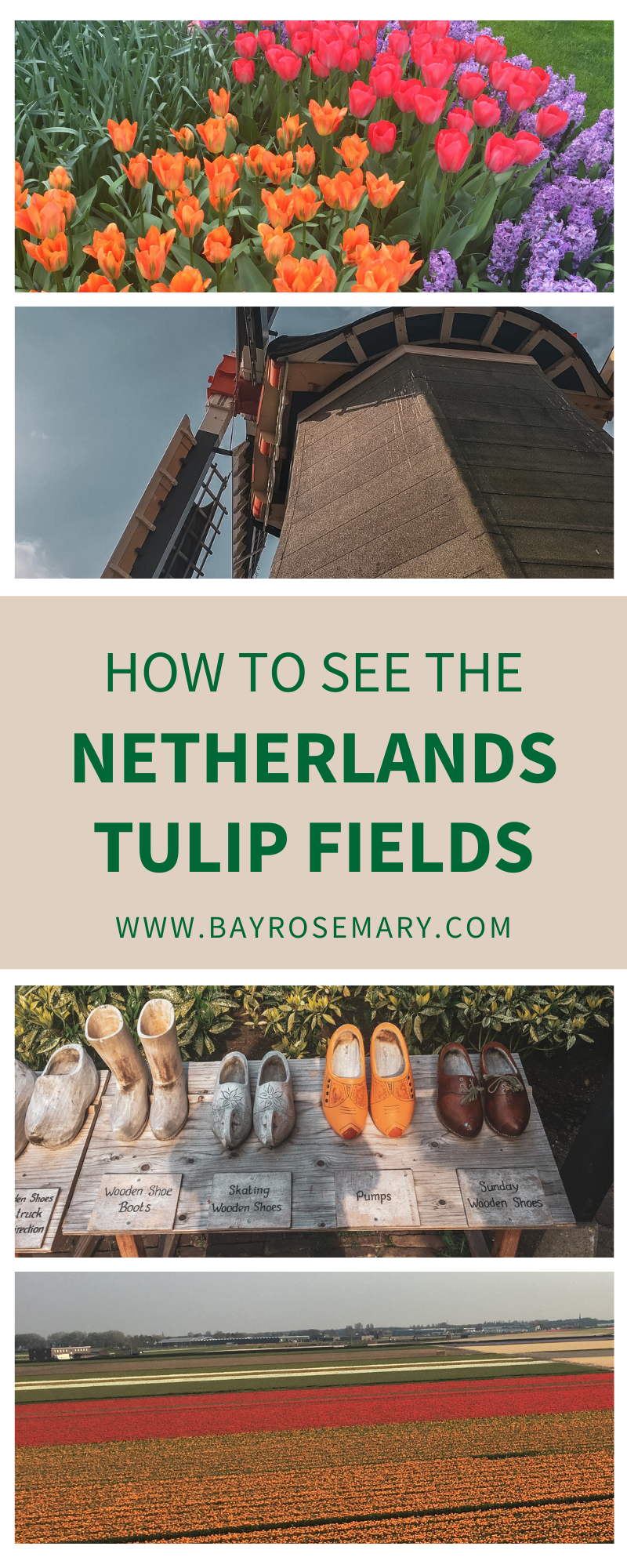 How to see the Netherlands' tulip fields
